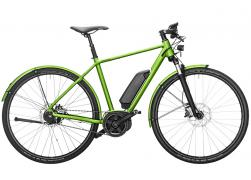 Riese & Muller Roadster City Demomodel 10km